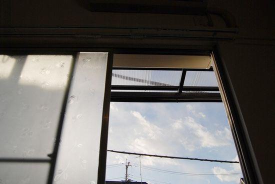 reno-reno50.jpg